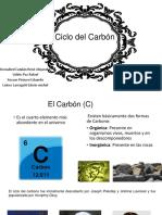 ciclo carbon