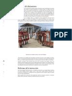 ROMA Reformas Militares de Cayo Mario