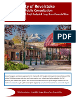 2019 Revelstoke budget public consultation document