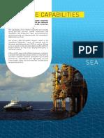 N-Sea Offshore Capabilities folder 2014.pdf