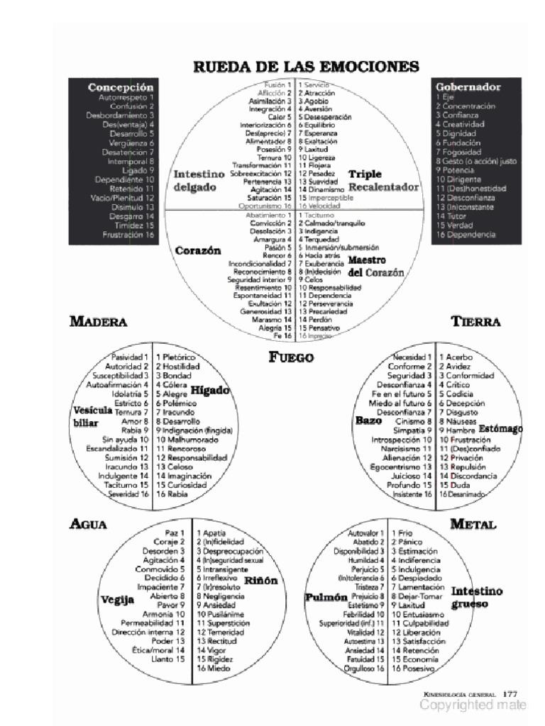 Afirmaciones Kinesiologia Rueda Emociones