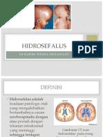 Patofisiologi CHF