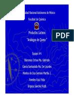 TEMA4.ANALOGOSQUESO_2833.pdf