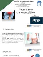 Traumatismo-craneoencefálico (1)