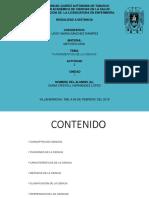 162E41386_Hernández_López_Diana Cristell_Act 2_U1.pptx