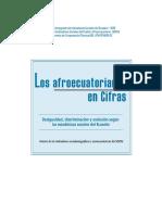 pubsii_0052 AFROECUATORIANOS EN CIFRAS 2001.pdf