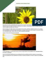 Biocombustibles-taller de Investigacion 1