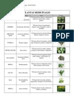 Tabla Plantas Medicinales