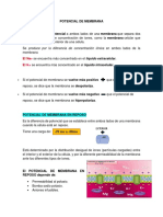 POTENCIAL DE MEMBRANA.docx
