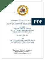 Bellandur & Varthur Rejuvenation Report