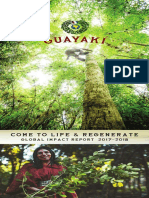 Guayaki Global Impact Report