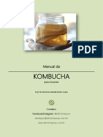 Manual Da Kombucha Para Iniciantes