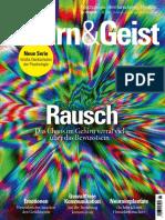 2018-12-07 Gehirn  and  Geist.pdf