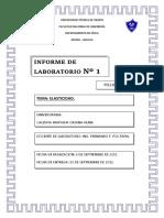 Informe de Lab 1 - Elasticidad