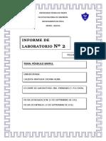 informe de lab 2 - pendulo simple.docx