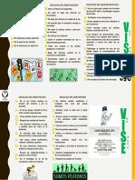 Decalogos Actores Viales(2)
