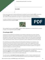 Tecnologia de Montaje Superficial (SMT) _ Curso de celulares.pdf