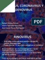Rinovirus, Coronavirus y Adenovirus