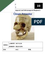 解剖10-顳區和顳下區(1).pdf