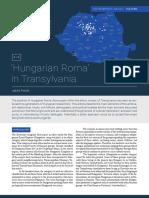 Hungarian_Roma_in_Transylvania.pdf