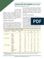 Nutrición y Fertilización Del Pino Caribeño