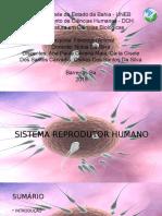 Apresentação FISIOLOGIA.pptx