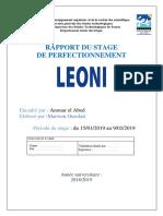 Rapport-du-stage-Houssem-final.docx