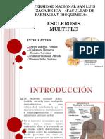 Esclerosis Multiple Diapo Terminado (1)
