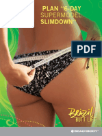 BBL SuperSlimdownGuide SP
