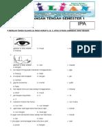 Soal UTS IPA Kelas 1 SD Semester 1 (Ganjil) Dan Kunci Jawaban (Www.bimbelbrilian.com)