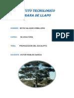 Instituto Tecnologico Copacabana de Llapo