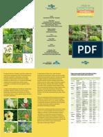 folder-Colecao-Plantas (1)