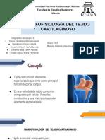 Morfofisiologia Del Tejido Cartilaginoso