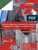 Guía de Trabajo IIS.pdf