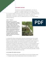 T.1.Enfermedades en Mexico ovinos