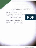 4_5962932727463281420.pdf