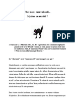 Chat noir, mauvais oeil... Mythes ou réalité ?