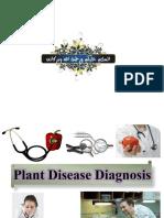 plantdiseasediagnosis-7-2
