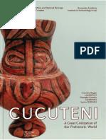 2009_Lazarovici_Lazarovici_Turcanu part 1.pdf