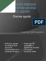 diarrea aguda en equinos.pdf
