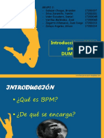 BPM FOR DUMMIES 3.0