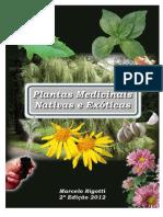 PLANTAS MEDICINAIS NATIVAS E EXÓTICAS.pdf