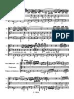 Bach - Passione SMatteo - Ich will dir mein.pdf