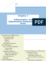 Inflammatory Response Pathophysiology
