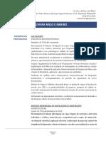 Currículo Ana Luiza Ribeiro
