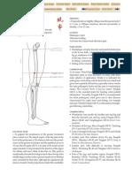 GB-31.pdf