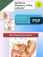 Pengaturan Hormon Terhadap Reproduksi Pria