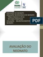 (AULA 3) AV DO NEONATO.pdf