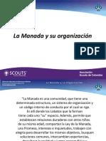 Manada y Organizacion