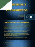 6.- Principios y Fundamentos